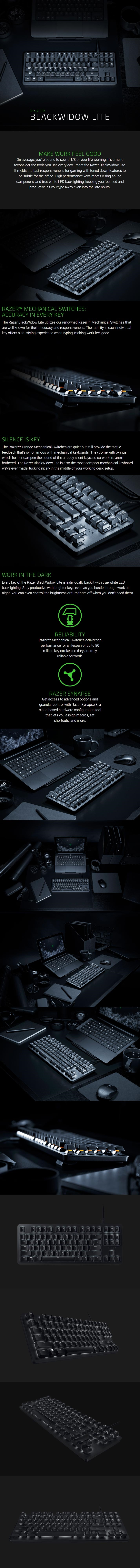 dee0a0bab17 Razer BlackWidow Lite - Silent Mechanical Gaming Keyboard (RZ03 ...