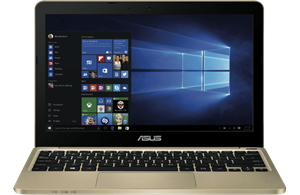 "Asus E200HA-FD0006TS 11.6"" HD Display Laptop - Gold"