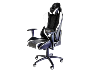 ThunderX3 TGC15-BW Gaming Chair - Black & White