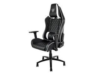 Thunderx3 TGC31-BW Gaming Chair -  Black & White