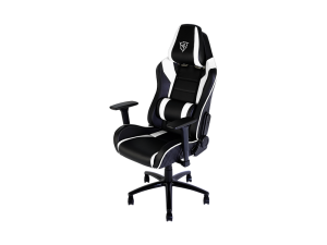 ThunderX3 TGC30-BW Gaming Chair - Black & White
