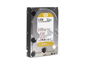 "Western Digital 1TB Gold Data Center 3.5"" Internal Hard Drive"