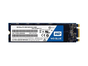 Western Digital WD Blue 500GB M.2 SSD